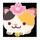 頭のせ三毛猫 桜