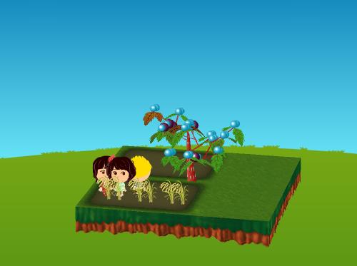 作物 稲 設置例