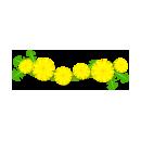 たんぽぽの花冠