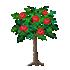 バラの木 赤
